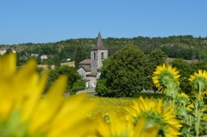 L'église à travers les tournesols